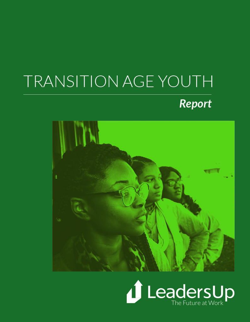 Transition Age Youth Key Insights Report